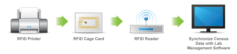 RFID Cage Card Solutions